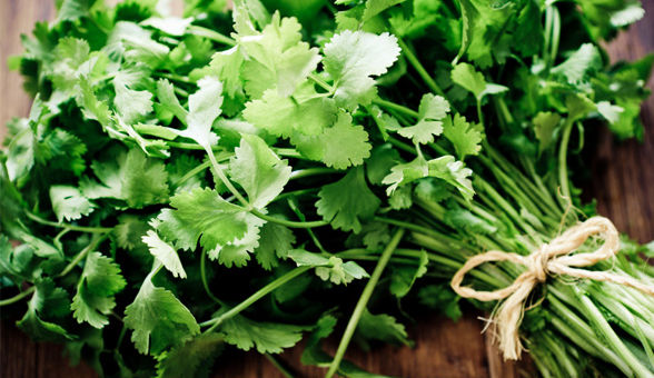 health-benefits-green-vegetable_article_new
