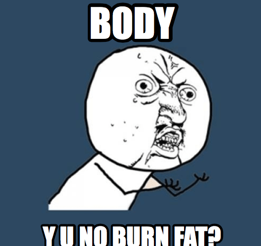 intermittent-fasting-meme-body
